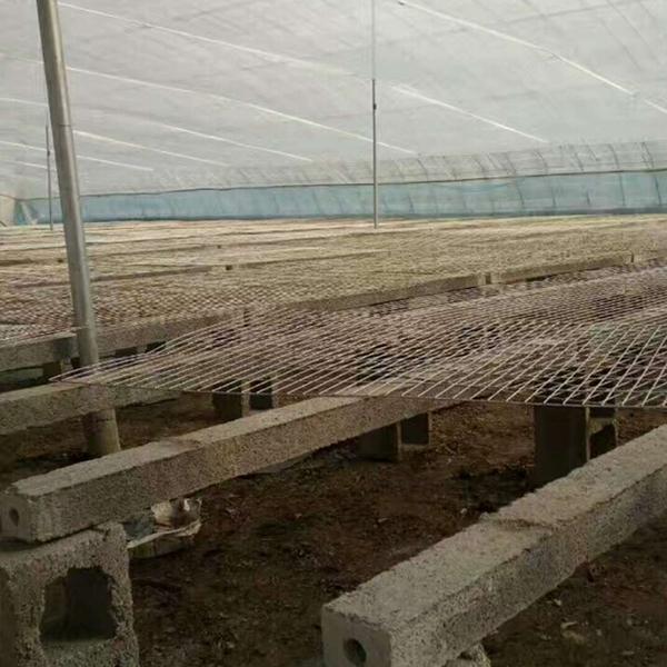 山东养殖专用立柱