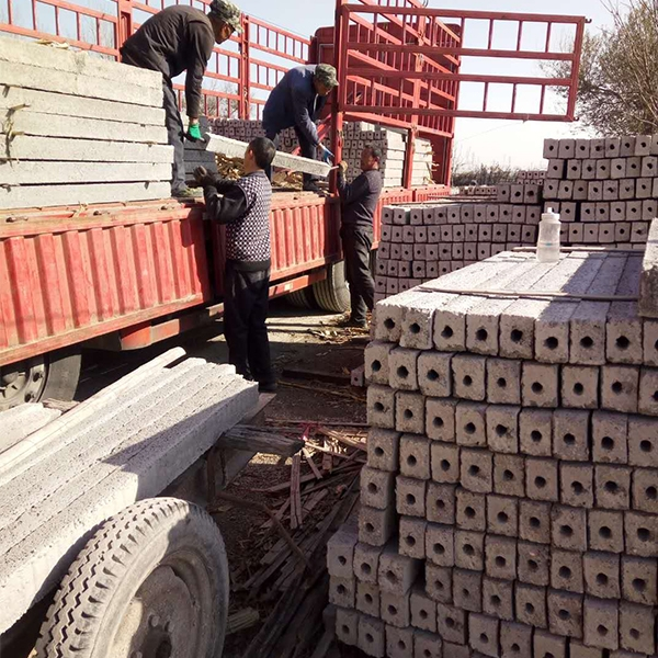 山东葡萄架水泥立柱